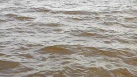 Φωτεινά κύματα στην επιφάνεια του ποταμού στους ελαφριούς ανέμους φιλμ μικρού μήκους