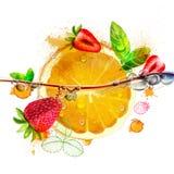 φωτεινά φρούτα πορτοκαλιών και φραουλών ελεύθερη απεικόνιση δικαιώματος