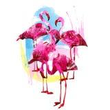 Φωτεινά φλαμίγκο watercolor ελεύθερη απεικόνιση δικαιώματος