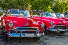 Φωτεινά χρωματισμένα εκλεκτής ποιότητας αυτοκίνητα στην παλαιά Αβάνα Στοκ Εικόνα