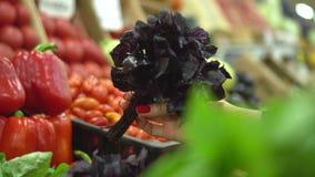Φωτεινά χρώματα των λαχανικών στην αγορά υγιής διατροφή Ευρεία επιλογή των πρασίνων Αγορά των υγιών τροφίμων απόθεμα βίντεο