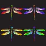 Φωτεινές ζωηρόχρωμες λιβελλούλες ελεύθερη απεικόνιση δικαιώματος