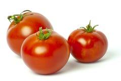 Φωτεινές κόκκινες φρέσκες ντομάτες Στοκ Φωτογραφία
