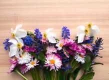 φωτεινή άνοιξη λουλουδ&i Στοκ Φωτογραφίες