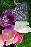 φωτεινή άνοιξη λουλουδ&i Στοκ Φωτογραφία