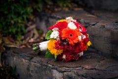 Φωτεινή δέσμη φθινοπώρου των λουλουδιών στα σκαλοπάτια πετρών Στοκ Εικόνα