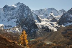 Φωτεινή ζωηρόχρωμη κίτρινη λίμνη βουνών φθινοπώρου, Ρωσία, Σιβηρία, βουνά Altai, κορυφογραμμή Chuya στοκ εικόνα με δικαίωμα ελεύθερης χρήσης