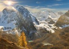 Φωτεινή ζωηρόχρωμη κίτρινη λίμνη βουνών φθινοπώρου, Ρωσία, Σιβηρία, βουνά Altai, κορυφογραμμή Chuya στοκ φωτογραφία