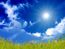 φωτεινή ημέρα ηλιόλουστη Στοκ Εικόνες