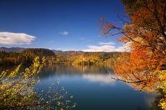 Φωτεινή ηλιόλουστη ημέρα φθινοπώρου στη λίμνη που αιμορραγείται, Σλοβενία Στοκ Εικόνες