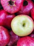 Φωτεινή κόκκινη κινηματογράφηση σε πρώτο πλάνο μήλων και ροδιών με το πράσινο μήλο standout Στοκ Εικόνες