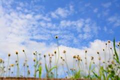 Φωτεινή μπλε ημέρα στοκ φωτογραφία
