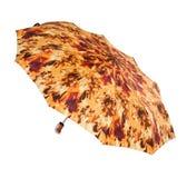 Φωτεινή ομπρέλα Στοκ Φωτογραφία