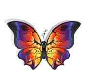 Φωτεινή πεταλούδα διανυσματική απεικόνιση