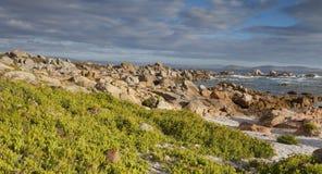 Φωτεινή ωκεάνια ακτή πετρών Στοκ φωτογραφίες με δικαίωμα ελεύθερης χρήσης