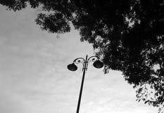 Φωτεινοί σηματοδότες Στοκ φωτογραφίες με δικαίωμα ελεύθερης χρήσης