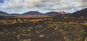 Φωτεινός ηφαιστειακός τομέας Στοκ φωτογραφίες με δικαίωμα ελεύθερης χρήσης