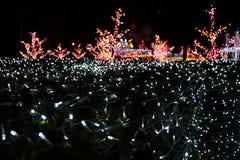 Φωτεινός κήπος 8 στοκ φωτογραφία με δικαίωμα ελεύθερης χρήσης