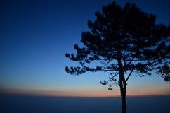 Φωτεινός σηματοδότης ενάντια στο μπλε ουρανό στοκ εικόνες με δικαίωμα ελεύθερης χρήσης