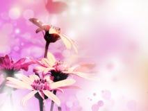 φωτεινός floral ανασκόπησης Στοκ Φωτογραφία