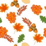 Φωτεινό άνευ ραφής σχέδιο φθινοπώρου με τα φύλλα και τα μούρα του mounta Στοκ Εικόνες