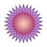 Φωτεινό αφηρημένο αστέρι μωσαϊκών Mandala ουράνιων τόξων λογότυπων Στοκ Φωτογραφίες