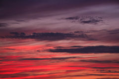 Φωτεινό θερινό ηλιοβασίλεμα πέρα από τη λίμνη στα ξύλα Στοκ Φωτογραφίες