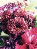 φωτεινό διάνυσμα εικόνων λουλουδιών ανθοδεσμών Στοκ Φωτογραφία