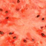 Φωτεινό κόκκινο υπόβαθρο του κομμένου καρπουζιού με τους σπόρους ηλίανθων, FO στοκ εικόνα με δικαίωμα ελεύθερης χρήσης