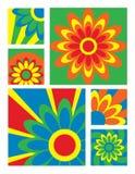 φωτεινό λουλούδι συλλογής Στοκ Φωτογραφίες