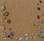 Φωτεινό πλαίσιο θαλασσινών κοχυλιών στην άμμο στοκ φωτογραφίες