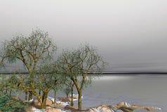 φωτεινό σεληνόφωτο νησιών Στοκ Εικόνες