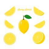 Φωτεινό σύνολο φρέσκου λεμονιού και Juicy φετών λεμονιών απεικόνιση αποθεμάτων