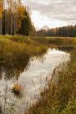 Φωτεινό τοπίο νερού φθινοπώρου Στοκ Φωτογραφία