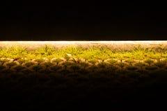 Φωτεινό φως στο πάτωμα οδών στη σκοτεινή νύχτα στοκ φωτογραφία με δικαίωμα ελεύθερης χρήσης
