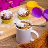 Φωτεινό Cupcake με τη ζάχαρη και τη σοκολάτα τήξης Στοκ εικόνες με δικαίωμα ελεύθερης χρήσης