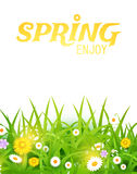 φωτεινό pome απεικόνισης καμπιών διάνυσμα Χλόη και υπόβαθρο λουλουδιών Σχέδιο άνοιξη Στοκ Εικόνες