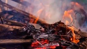 Φωτιά κινηματογραφήσεων σε πρώτο πλάνο στο δάσος στον αγροτικό της Ταϊλάνδης απόθεμα βίντεο