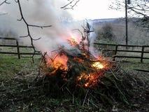 Φωτιά μέσω των δέντρων Στοκ Φωτογραφία