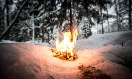 Φωτιά σε ένα χιονώδες καθάρισμα στα ξύλα τονισμένος Στοκ φωτογραφία με δικαίωμα ελεύθερης χρήσης