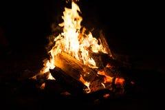 Φωτιά στη φύση Στοκ Φωτογραφία