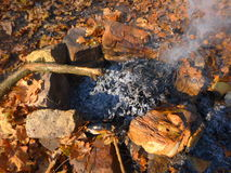 Φωτιά στο δάσος φθινοπώρου Στοκ Εικόνες