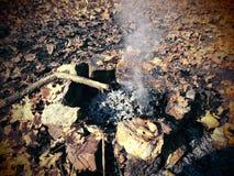 Φωτιά στο δάσος φθινοπώρου Στοκ εικόνα με δικαίωμα ελεύθερης χρήσης