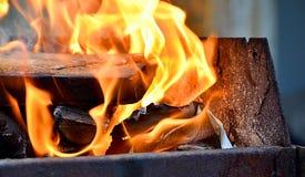 Φωτιά στο δάσος Στοκ Φωτογραφίες
