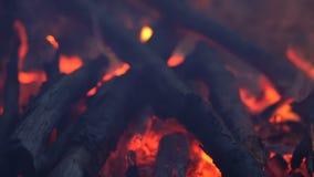 Φωτιά στρατοπέδευσης στο σούρουπο απόθεμα βίντεο