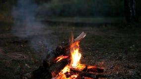 Φωτιά τη νύχτα απόθεμα βίντεο