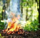φωτιά Στοκ Εικόνες
