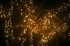 Φωτισμένο δέντρο φαντασίας Στοκ φωτογραφίες με δικαίωμα ελεύθερης χρήσης