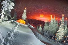 Φωτισμένο χειμερινό δάσος Carpathians στοκ φωτογραφία