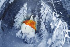 Φωτισμένο χειμερινό δάσος Carpathians στοκ φωτογραφία με δικαίωμα ελεύθερης χρήσης
